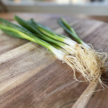 Load image into Gallery viewer, fresh green spring onions on a wooden board