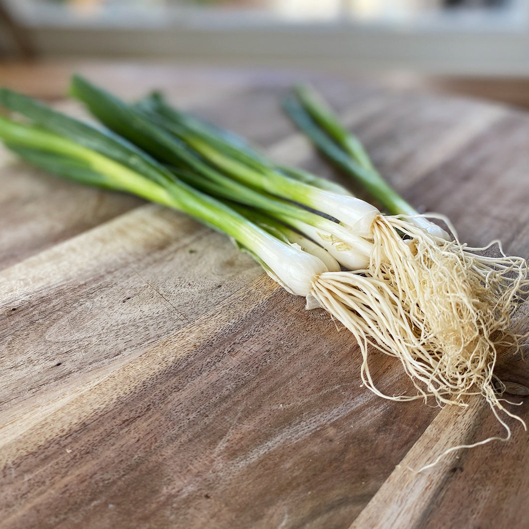 fresh green spring onions on a wooden board