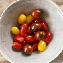 Load image into Gallery viewer, collection of Heirloom cherry tomatoes in a bowl