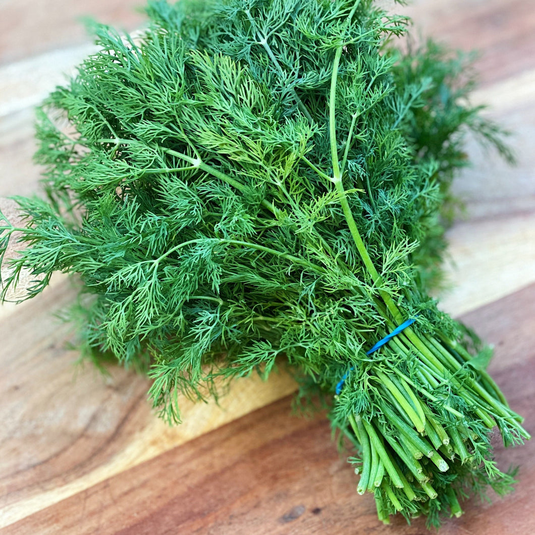 fresh bunch of dill on a wooden board