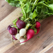 Load image into Gallery viewer, fresh Heritage radishes on a wooden board