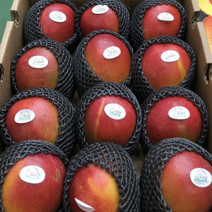 box of red mangos in packaging