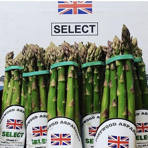 fresh green bunches of asparagus