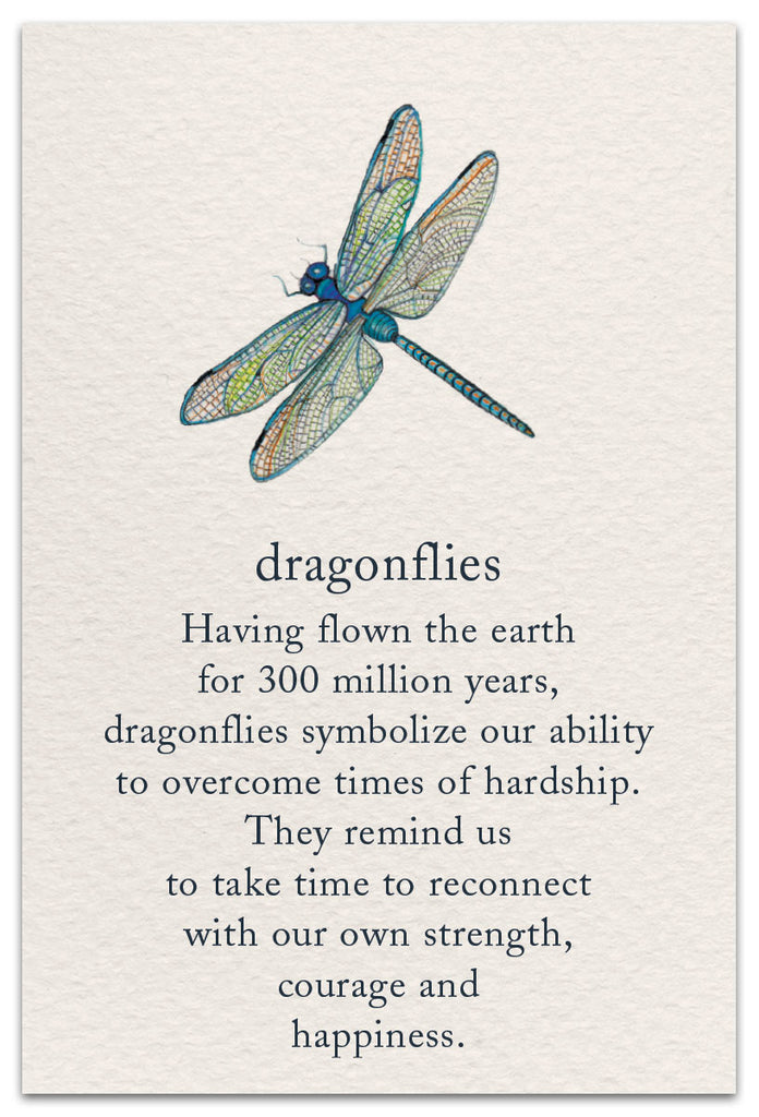 Encouragement ~ Dragonfly