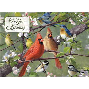 Birthday ~ Songbirds