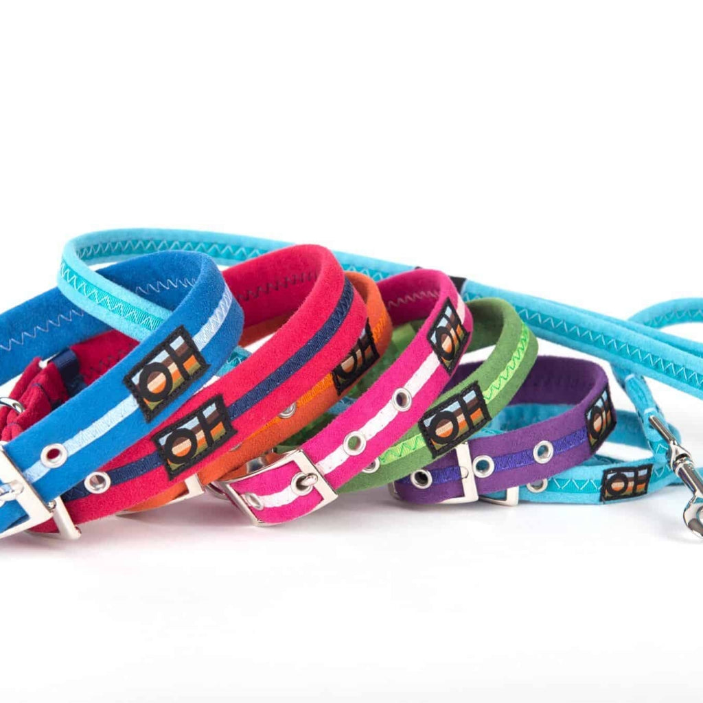 Oscar & Hooch Signature Dog Collars