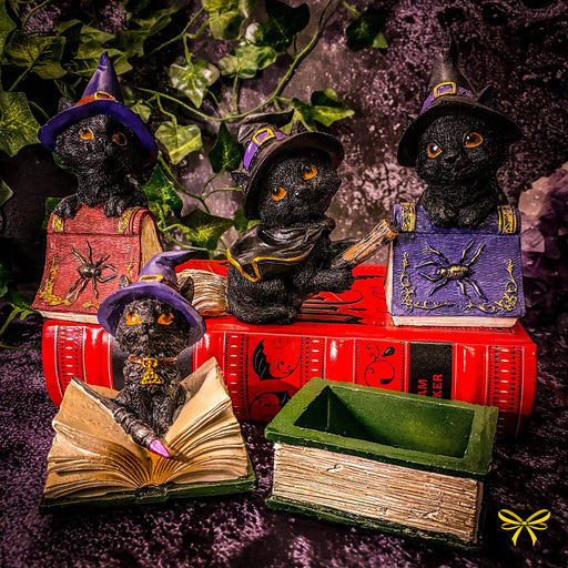 Coven Keepers Witches Familiars Black Cats Collection - GOLDENHANDS