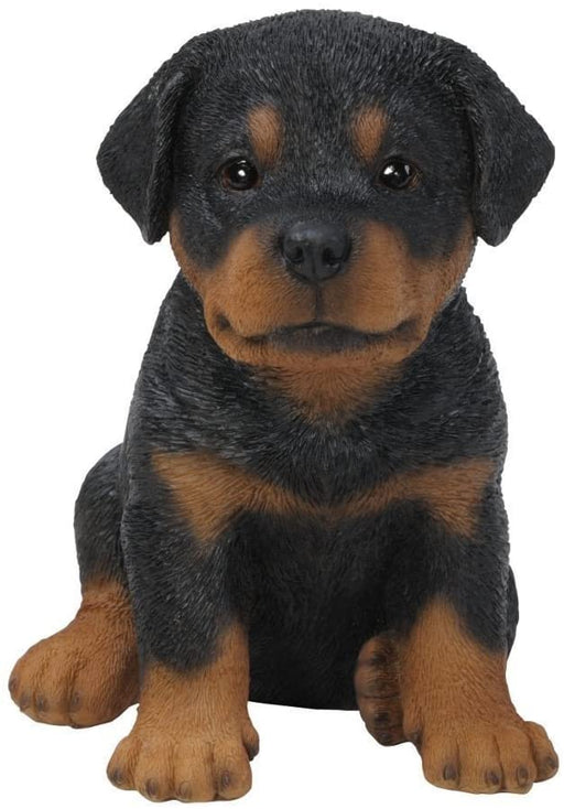 Rottweiler Puppy Pet Pals Home or Garden Decoration - GOLDENHANDS