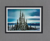 Handmade Photo Card of Snow Covered Trees Blacktail Mountain Blank Greeting Card