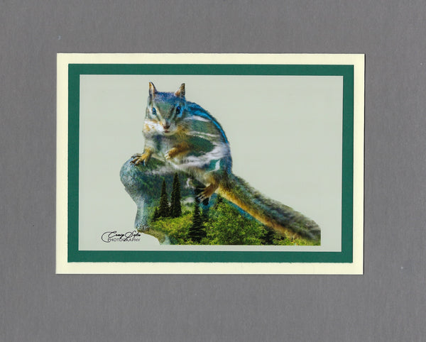 Handmade Double Exposure Photo Cards Chipmunk Blank Greeting Card