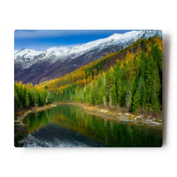 Fall Color Reflections along the Northfork of the Flathead River 8X10 Metal Print