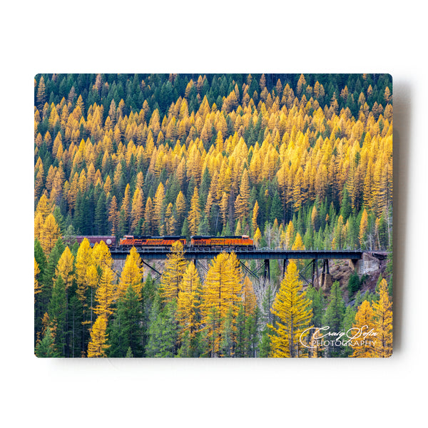 Fall Colors Freight Train Glacier National Park 8 X 10 Photographic Metal Print