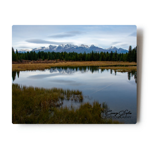 Sunset In A Pond Along The Northfork Rd Montana 8 X 10 Metal Print