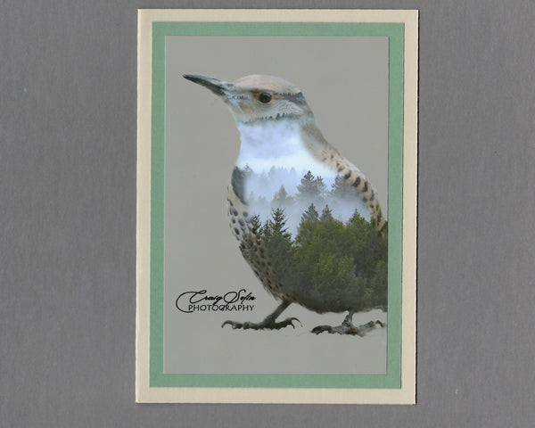 Handmade Double Exposure Photo Cards Northern Flicker Blank Greeting Card