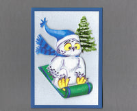 Handmade Fabric Sledding Owl Holiday Christmas Blank Greeting Card