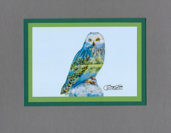 Handmade Double Exposure Photo Cards Short-eared Owl Blank Greeting Card