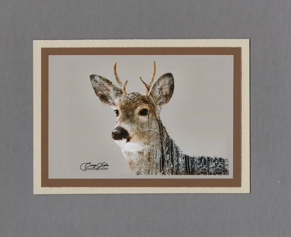Handmade Double Exposure Photo Cards Whitetail Deer Blank Greeting Card