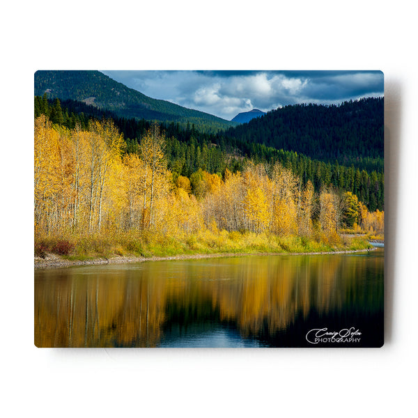 Fall colors along the Middlefork of the Flathead river 8X10 Metal Print