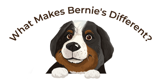 What Makes Bernie's Different?