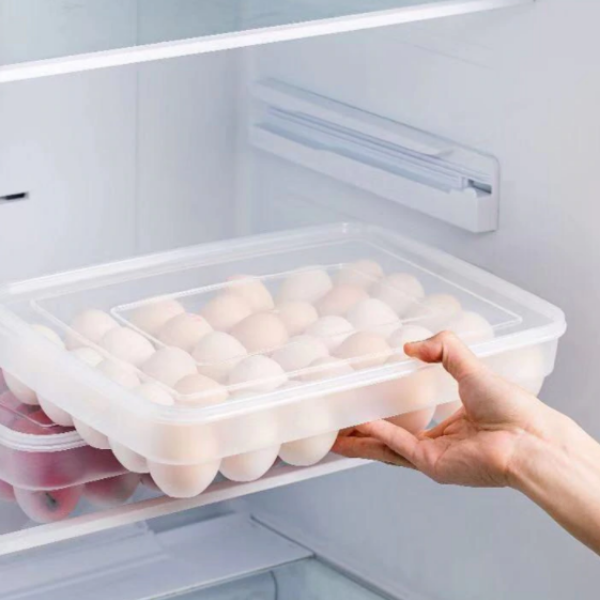 Egg Storage Box (4815313633314)