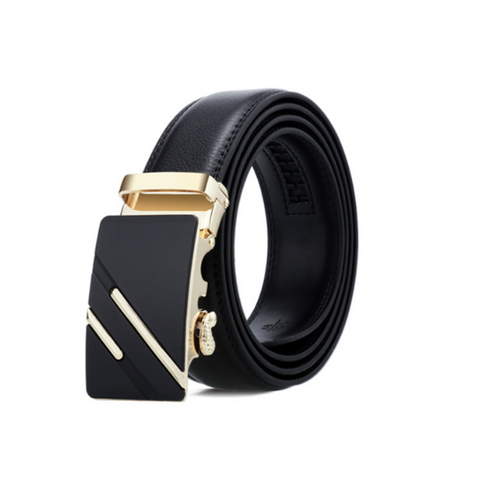 Image of Mens Belt