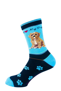 Cavapoo Dog Socks Signature - samnoveltysocks.com