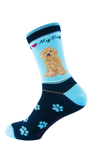 Labradoodle Brown Dog Socks Signature - samnoveltysocks.com