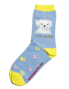 Maltipoo Dog Socks - samnoveltysocks.com