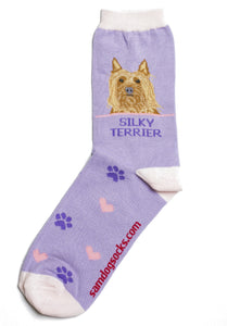 Silky Terrier Dog Socks - samnoveltysocks.com