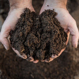 Quality All Purpose Compost