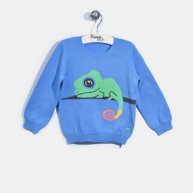 L-KATE-Rainbow Chameleon Jumper-Kids Boy-Sea