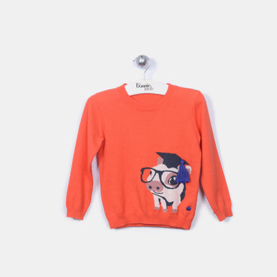 L-PERRY - Pig Jumper - Kids Unisex - Flame lily