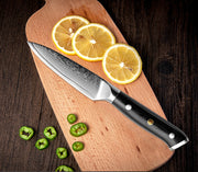 Professional Japanese Fruit Knife 3.5-Inch