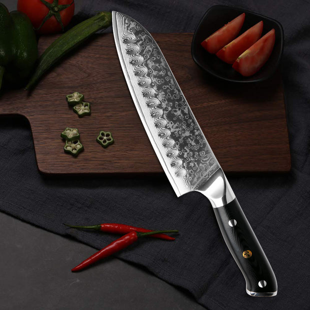 Professional Japanese Knife Set - 5 Piece