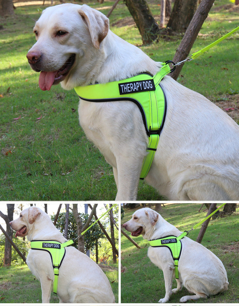 Custom Breathable Harness Vest for Dog with Reflective Strip and Metal Buckle