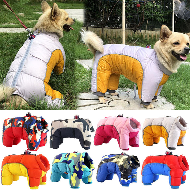 Winter Warm Down Dog Jacket