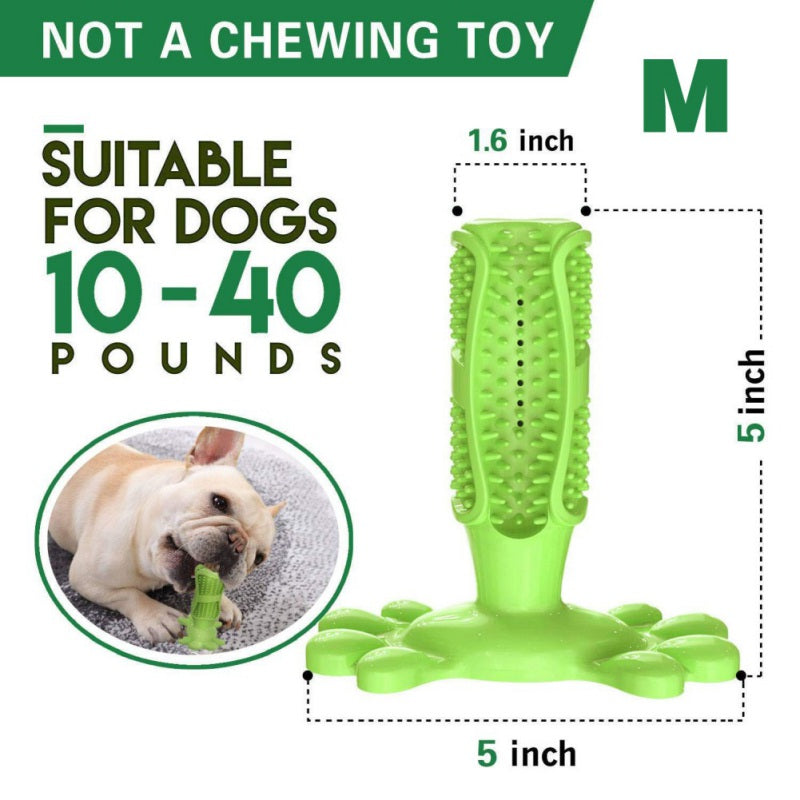 Toothbrush For Dog