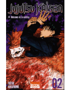 Jujutsu Kaisen Volume 02 Birth of the matrix
