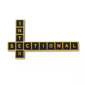 Intersectional Enamel Pin