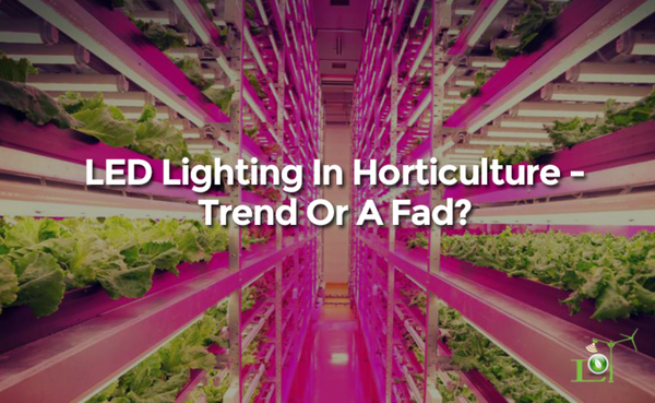 LED Lighting In Horticulture - Trend Or A Fad?