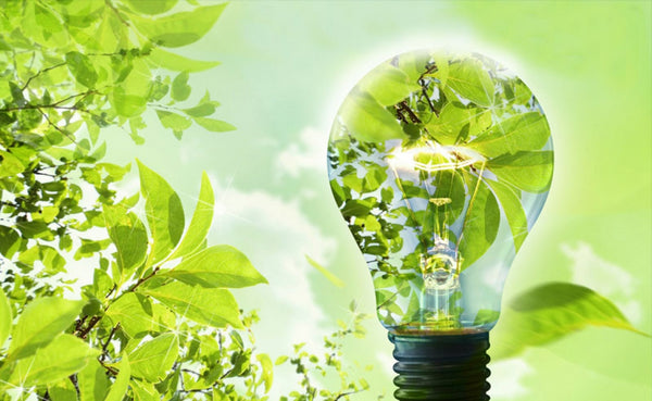 How LED Lights Prove to be Energy Efficient