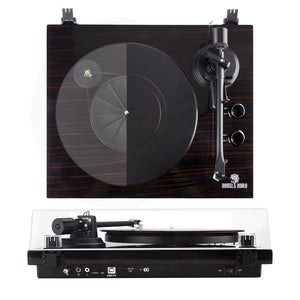 How to setup your turntable?