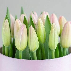 "Mini box ""Princesa"" 20 tulipanes rosado"