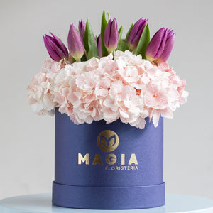 Mini box con 10 tulipanes + hortensias