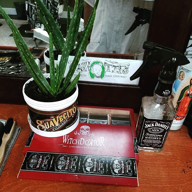 recycled and reused suavecito pomade can jar with plant in it