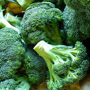 Broccoli - KBF Farms