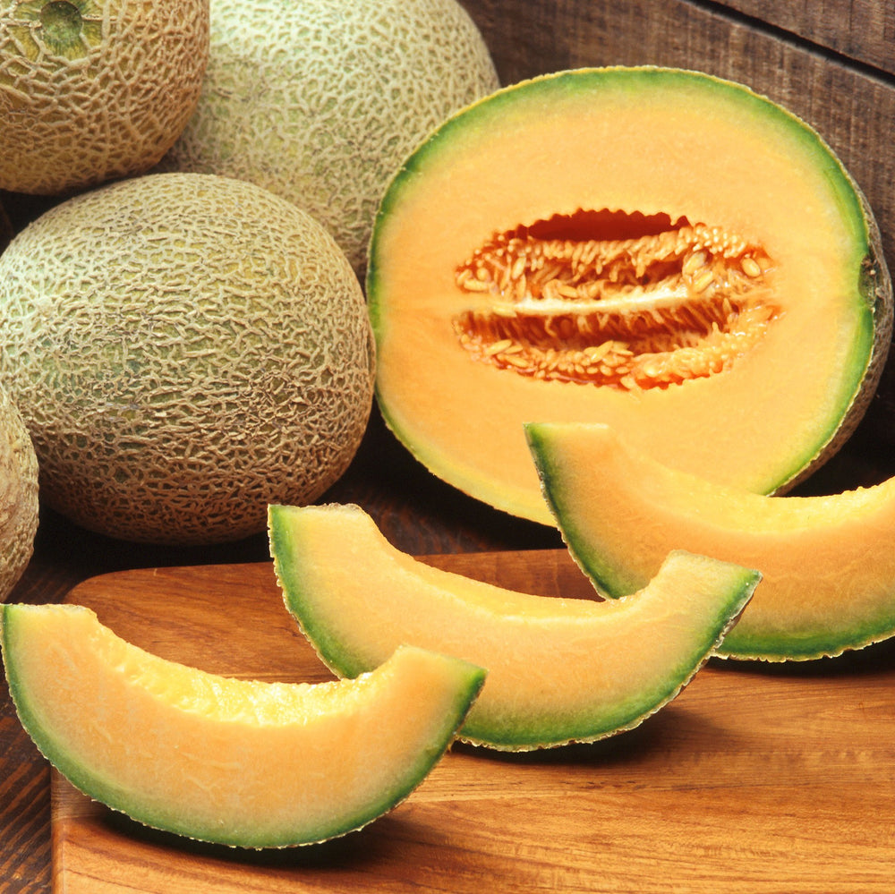 Cantaloupe - KBF Farms