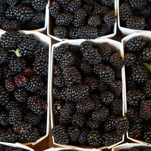 Load image into Gallery viewer, Blackberries - KBF Farms