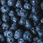 Blueberries - KBF Farms - Farm Market & Nursery - K.B.F. Enterprises Inc.