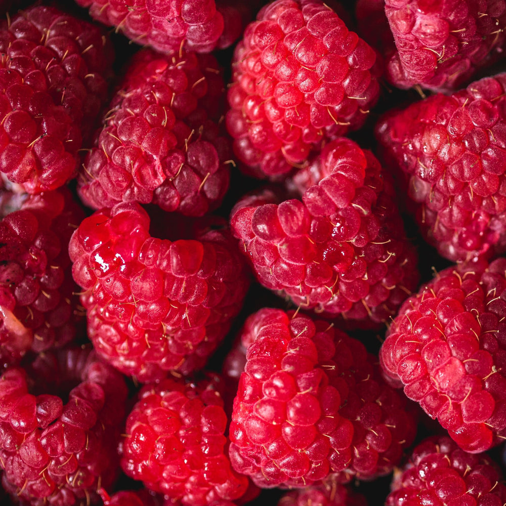 Rasberries - KBF Farms - Farm Market & Nursery - K.B.F. Enterprises Inc.